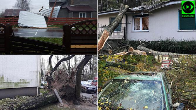 Tysiące powalonych drzew, setki zniszczonych budynków. Tragiczne skutki cyklonu Grzegorz