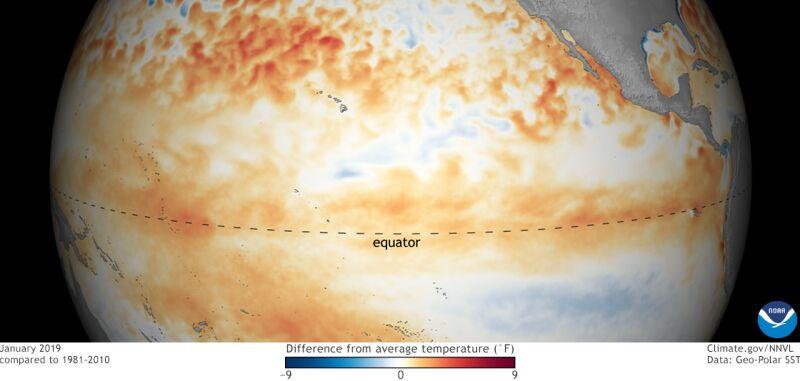 Odchylenie temperatury oceanu w styczniu od średniej wieloletniej (NOAA)